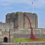 Iconic Poppy Sculpture Weeping Window Opens in Carlisle